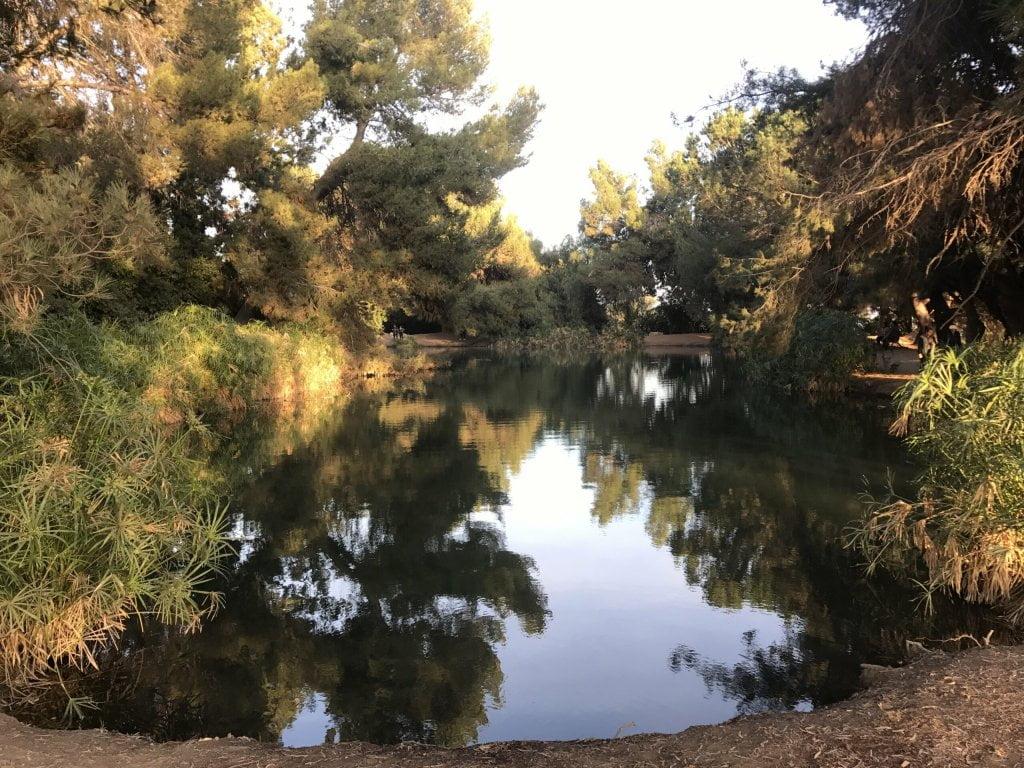 ernest e debs regional park fishing