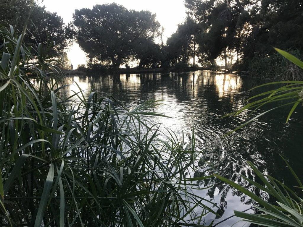 ernest e debs regional park pond