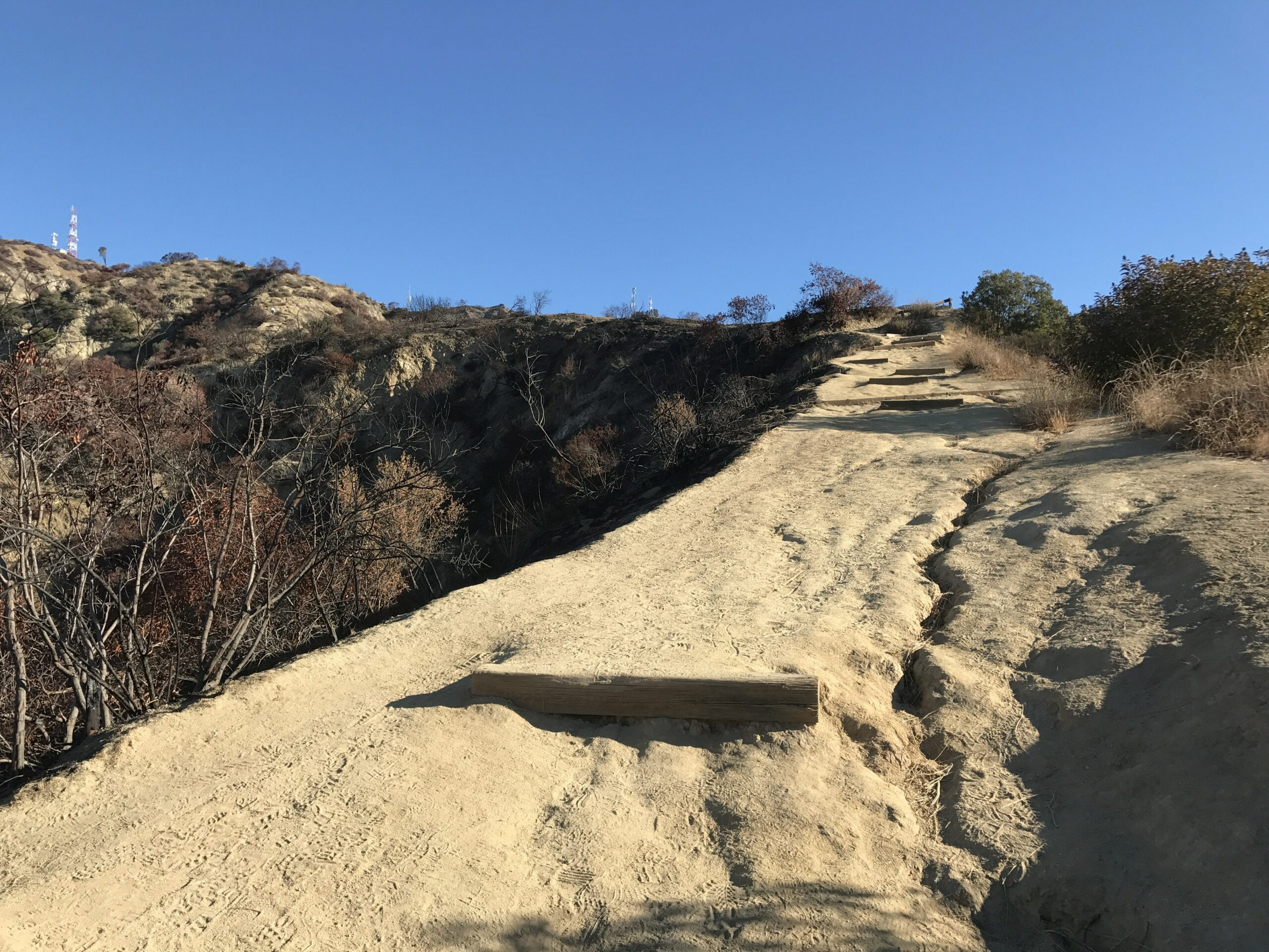 Wildwood Canyon hike