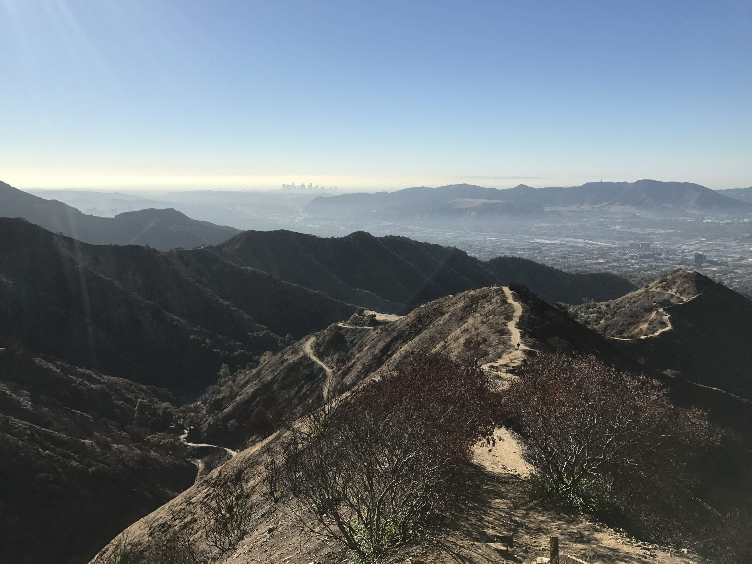 Wildwood canyon summit view