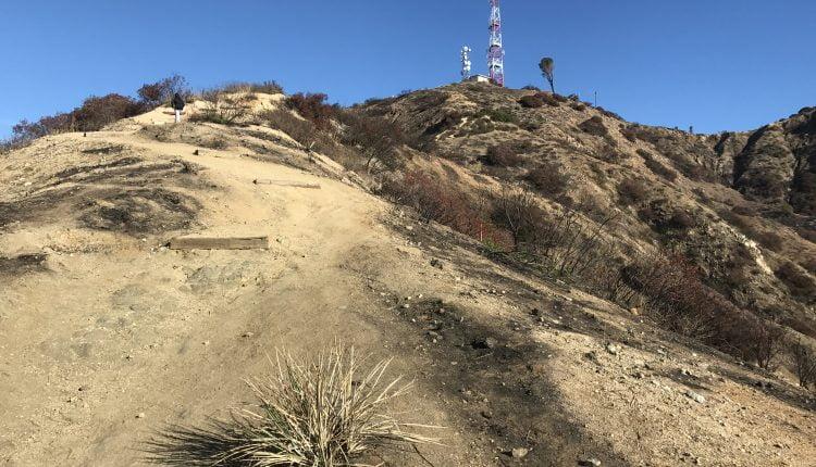 Wildwood canyon radio towers