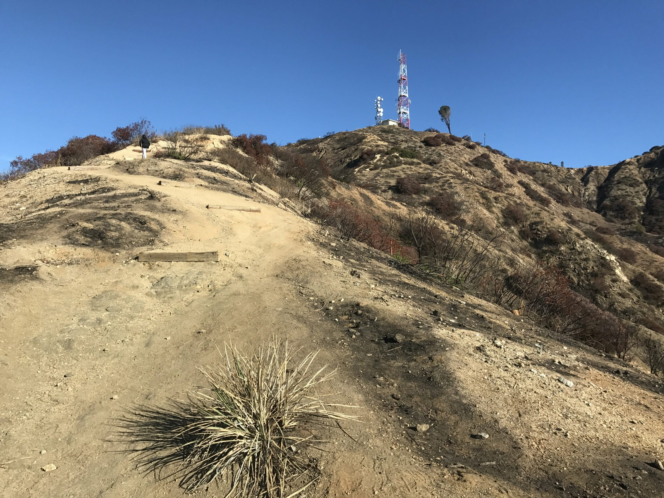 Wildwood canyon radio towers