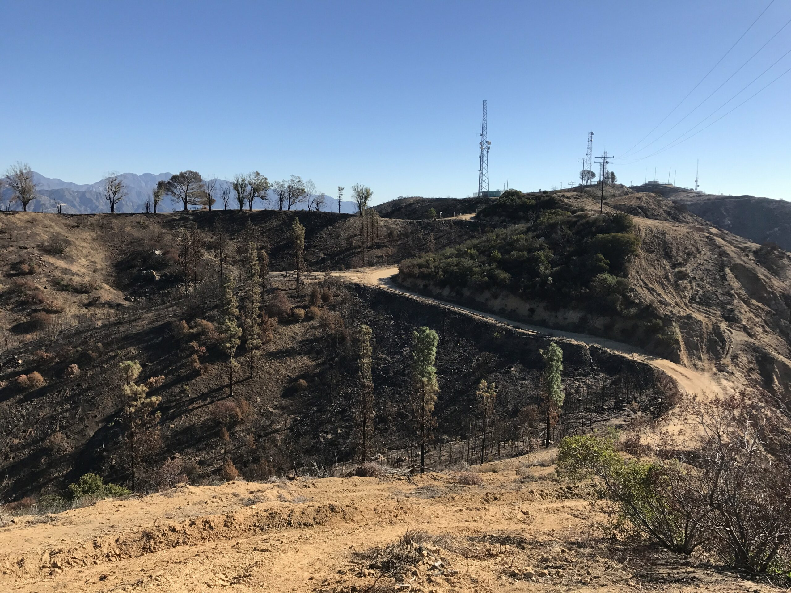 Wildwood canyon fire damage
