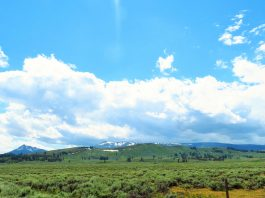 RV trip to Yellowstone National Park