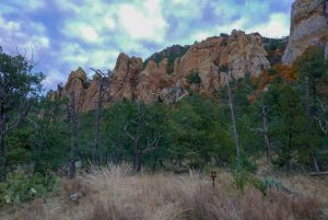 Pinnacles Site Big Bend National Park