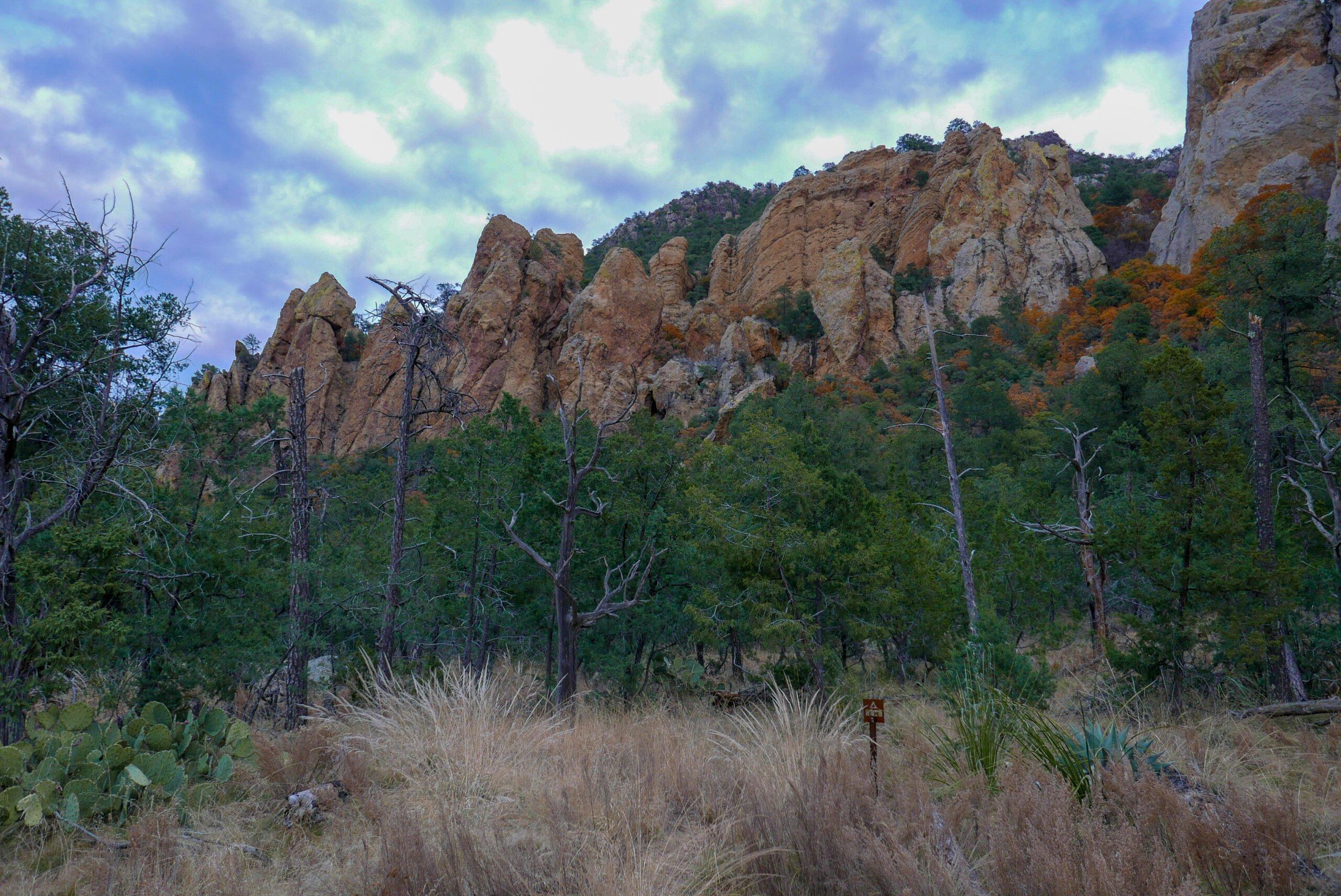 Pinnacles Site Big Bend National Park