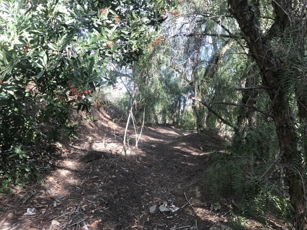 arroyo pescadero trail