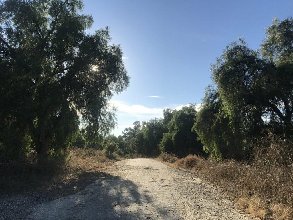 Arroyo Pescadero trail empty path