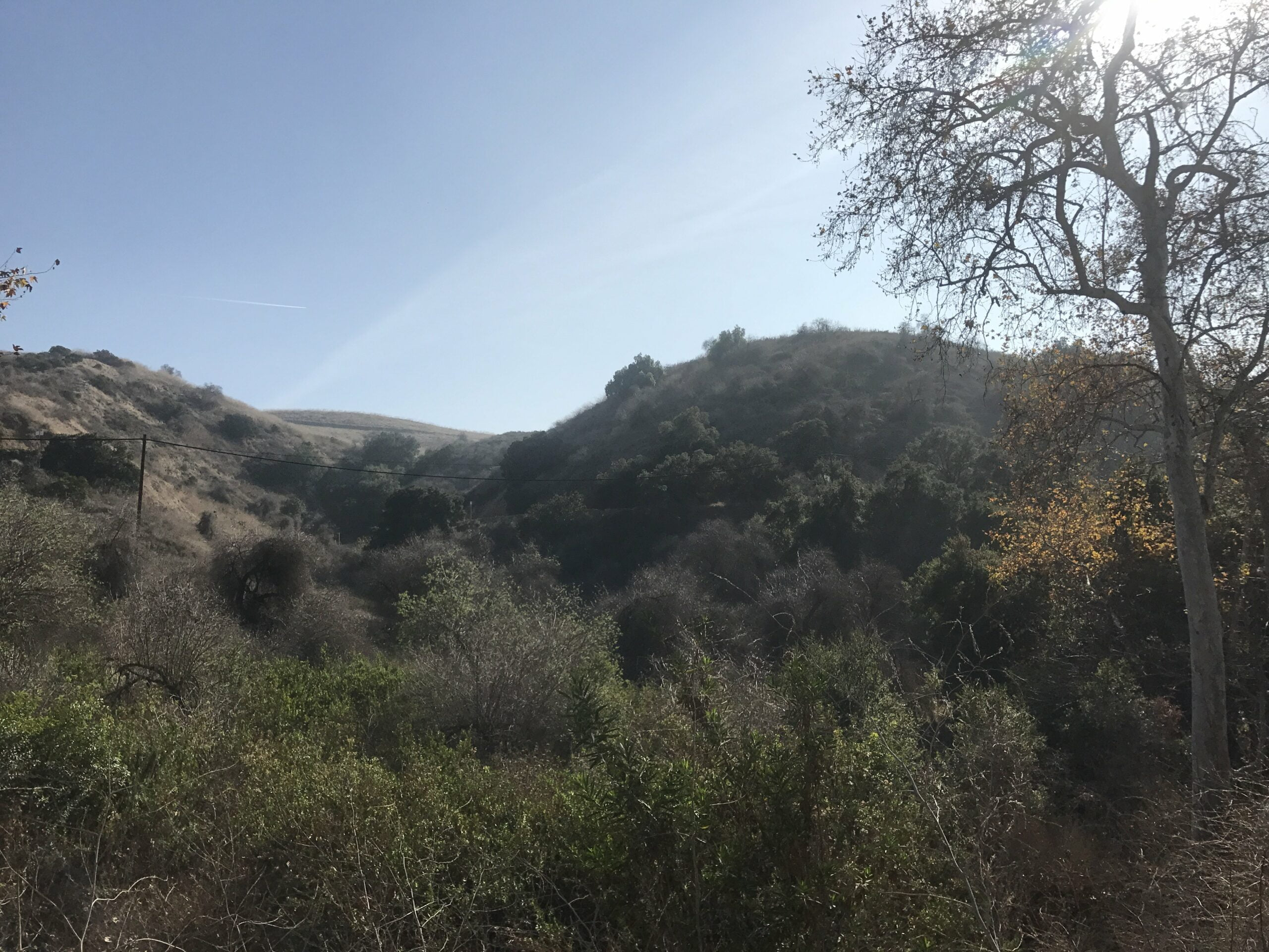 Turnbull Canyon Trail mountains
