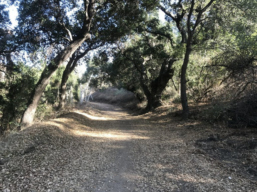 Turnbull Canyon hiking trail