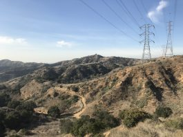 Turnbull Canyon
