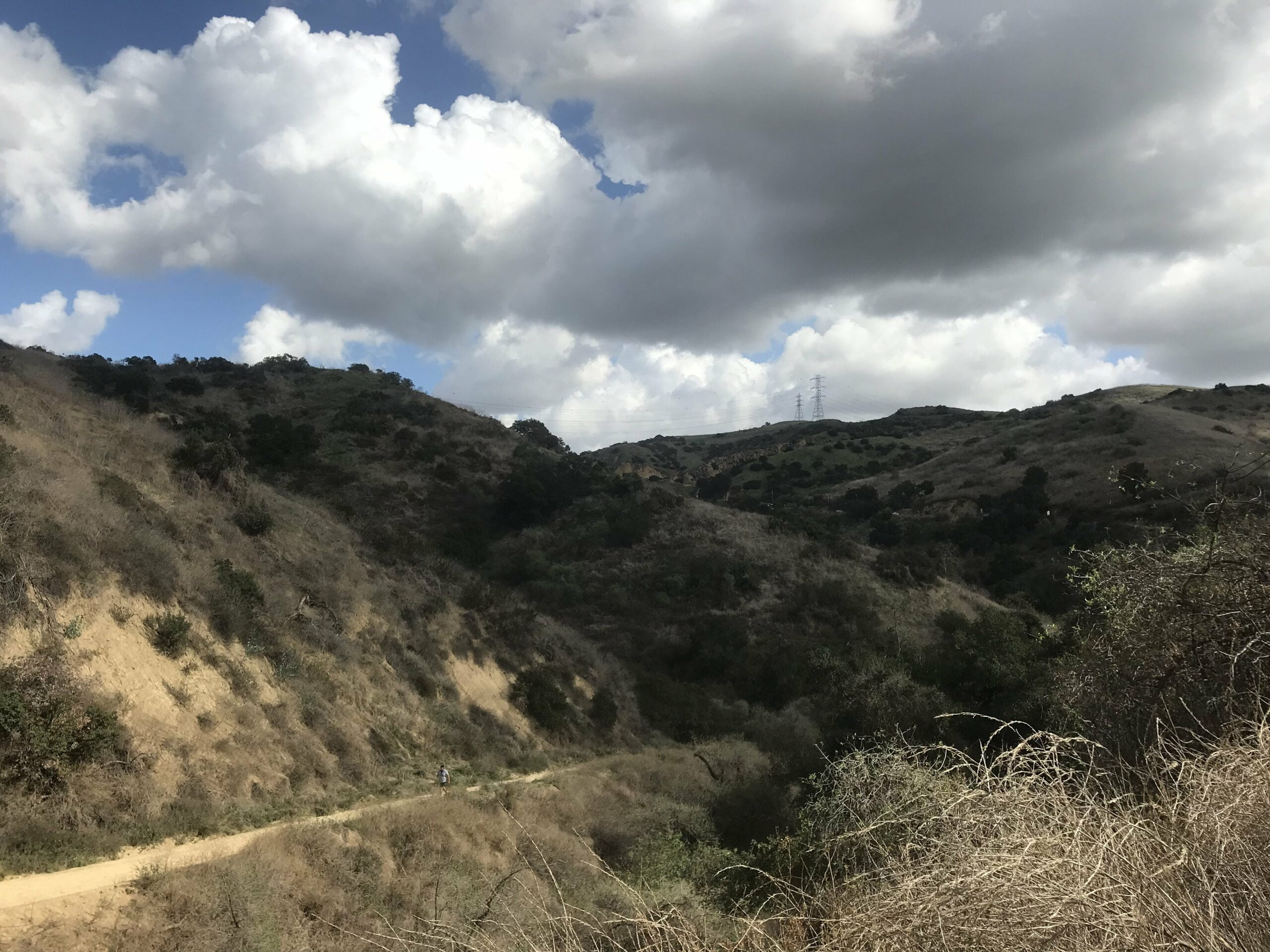 Turnbull Canyon sumac trail