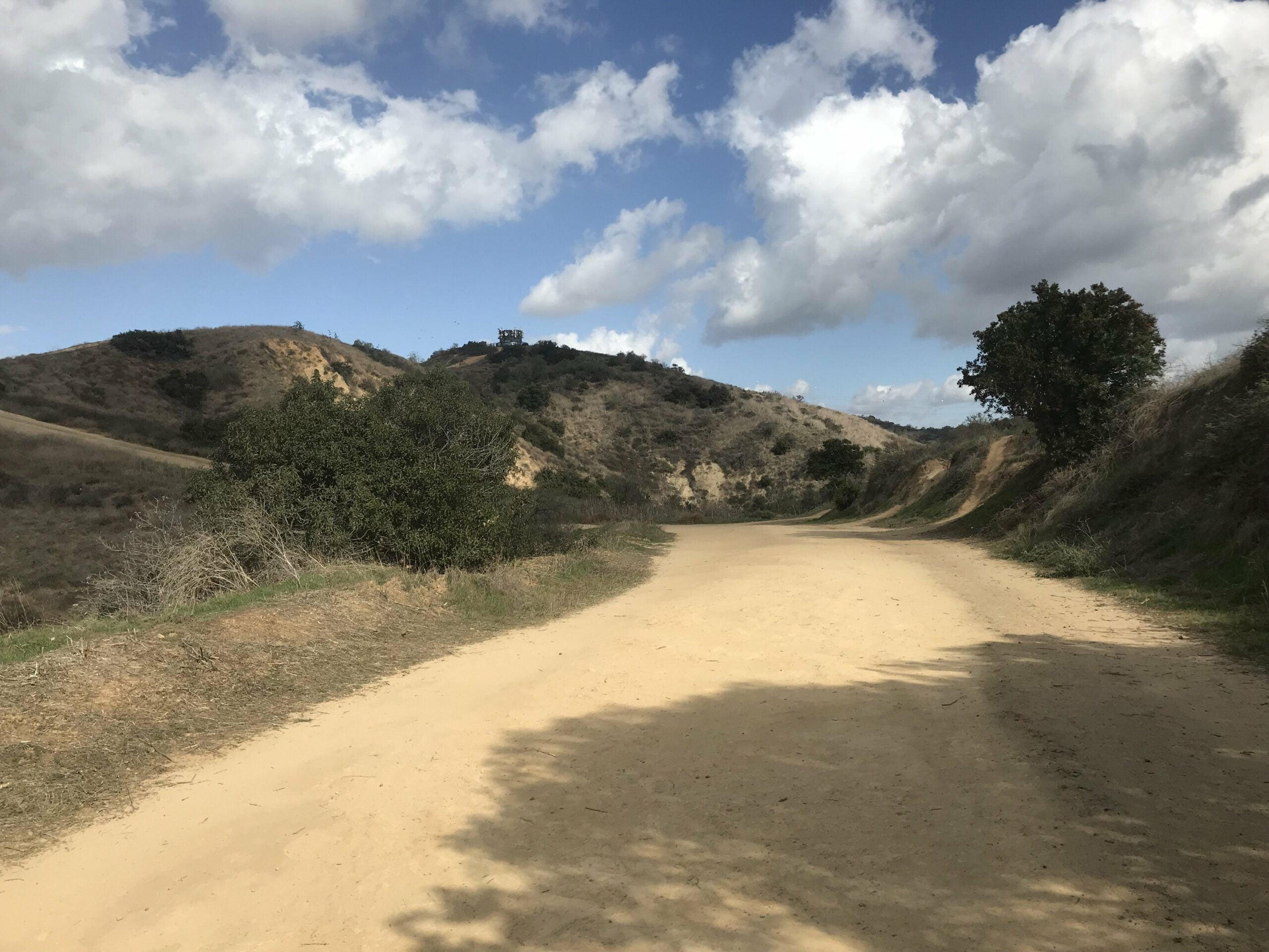 Turnbull Canyon rattlesnake trail