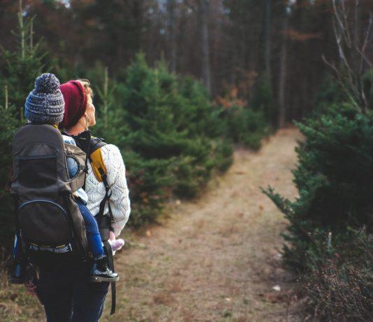 Eastern Sierras Hiking With Kids