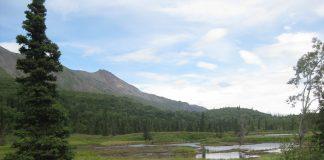 Chitna Pass, Talkeetna, Alaska