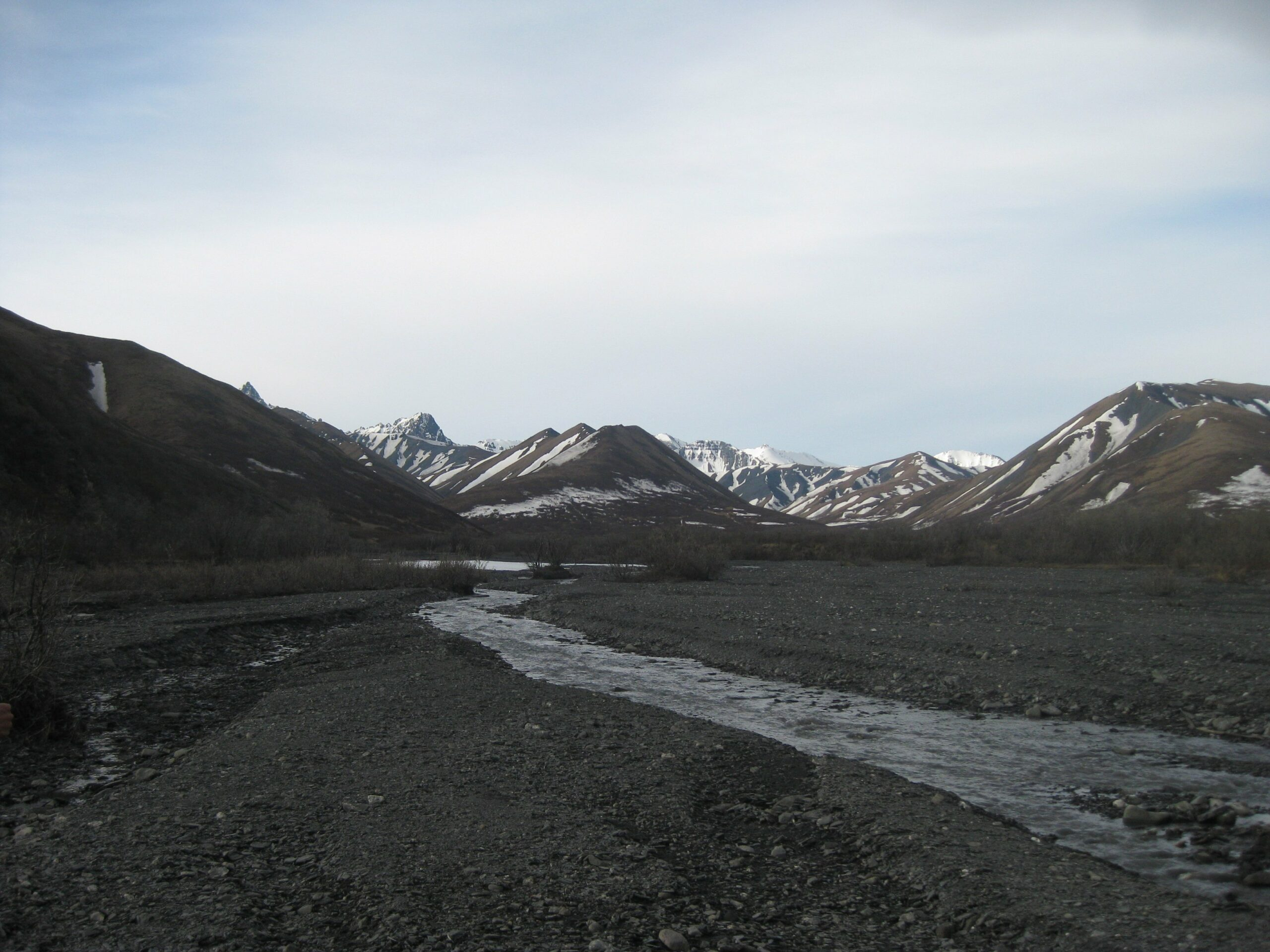 savage river denali alaska