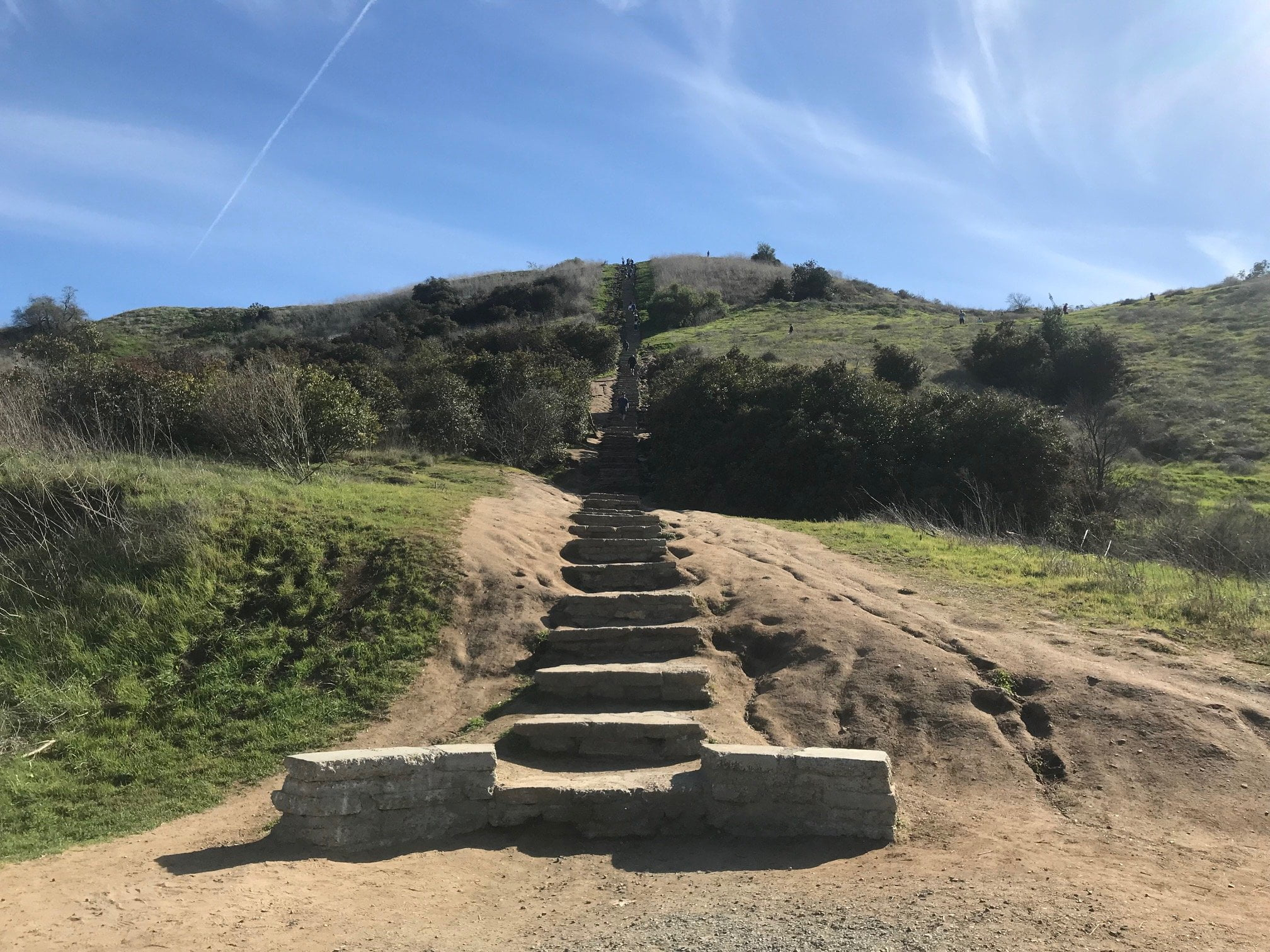 Culver City Staircase up the mount