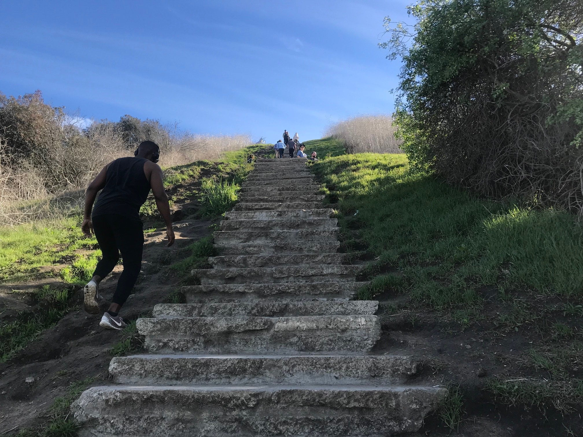 Culver City Stairs steps up the mountain