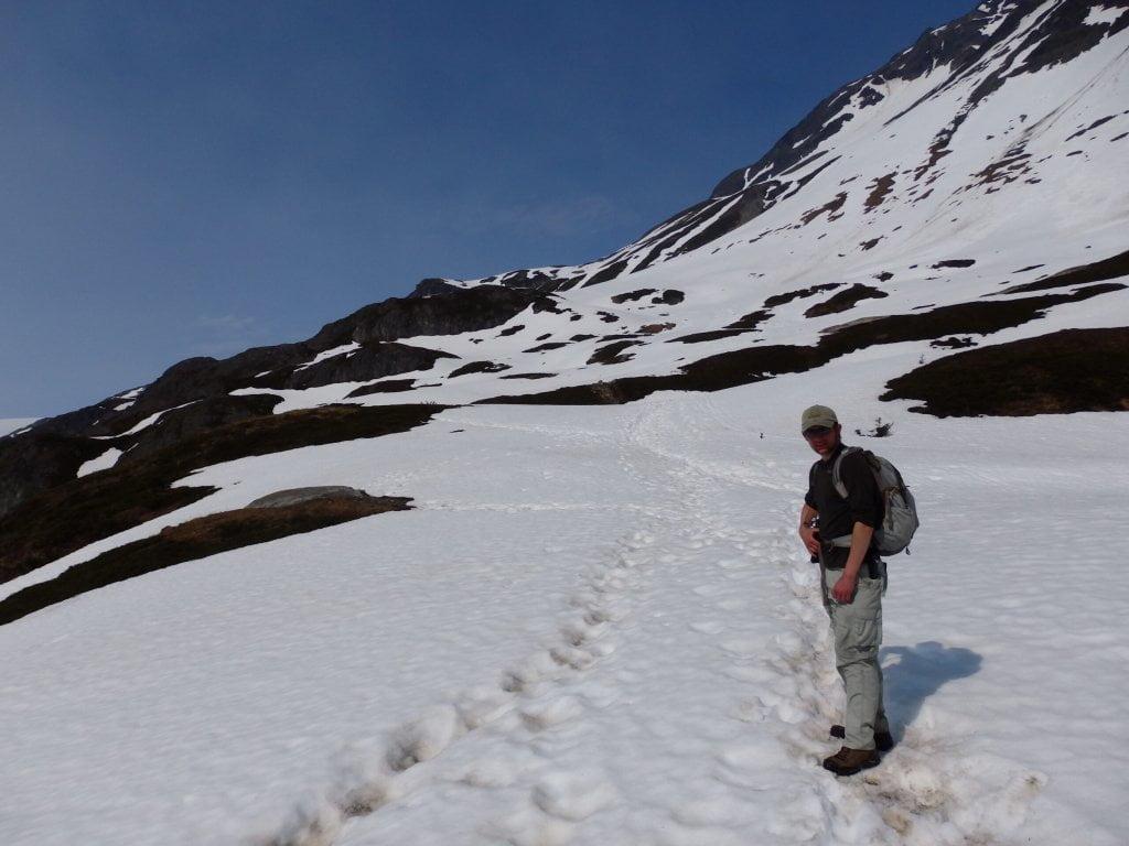 exit glacier harding ice field