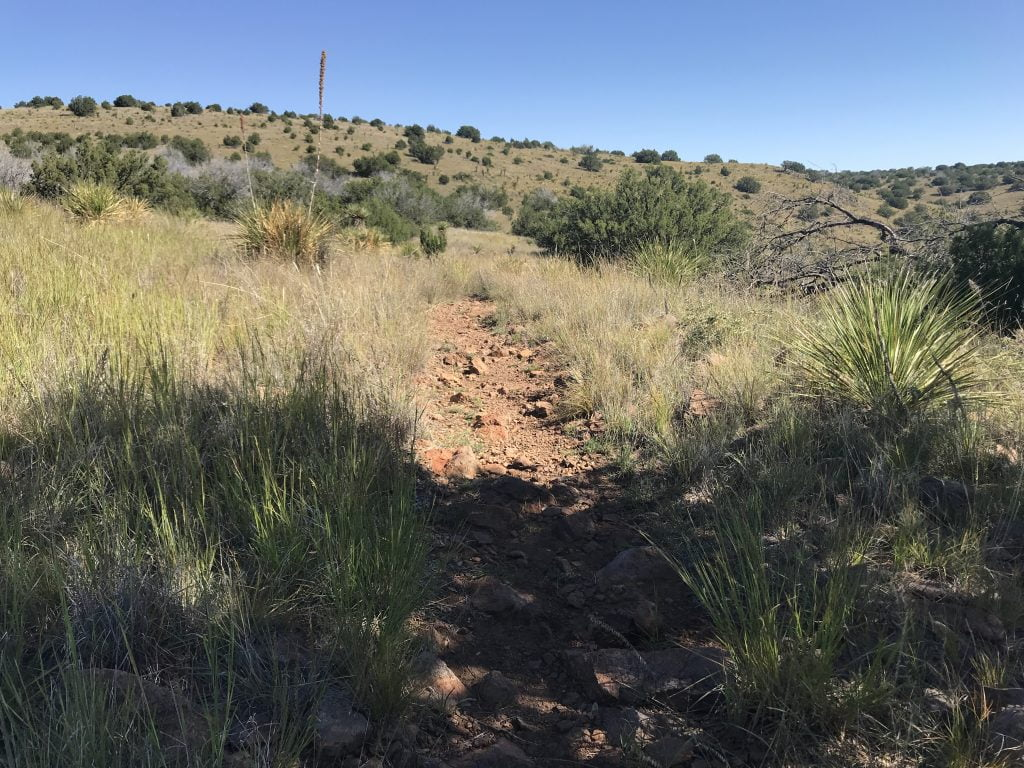 Davis Mountains State Park hiking trail