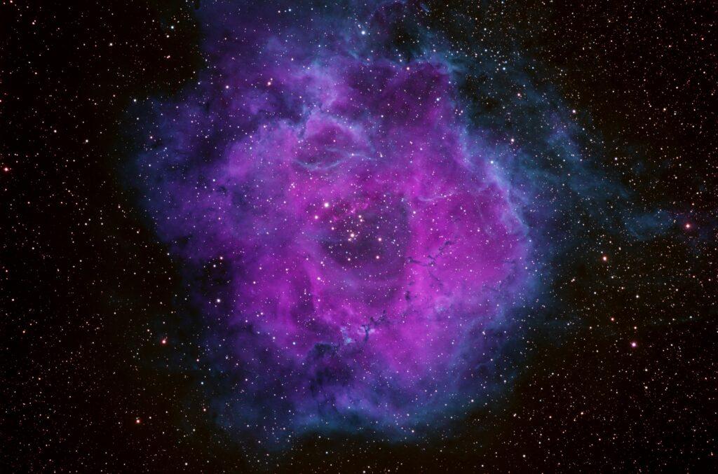 OSH Rosette Nebula